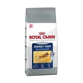 ROYAL CANIN Energy 4300
