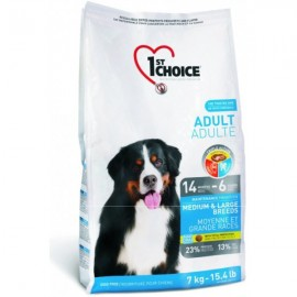 1st CHOICE DOG Adult Medium&Large